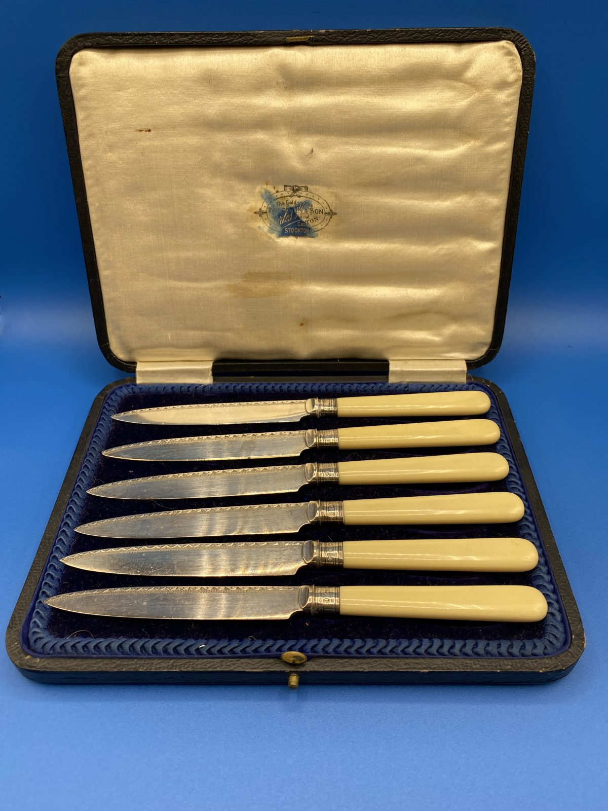 G3 - A Boxed Set of 6 Bone Handled Fruit Knives with Silver Ferrules, Sheffield 1921.  £48